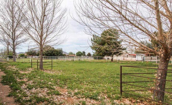 Ranchos Jardines Pasture